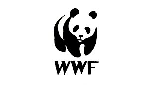 How to Draw the WWF Logo