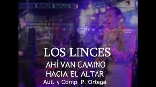 preview picture of video 'LOS LINCES   AHI VAN CAMINO HACIA EL ALTAR mpeg2video'