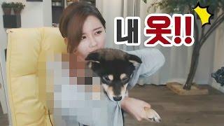 김이브님♥순덕이 때문에 방송사고 날 뻔하다!?