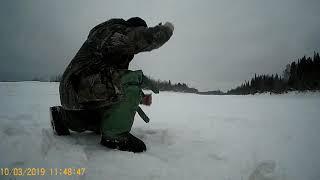 Отчеты о рыбалке северная сосьва