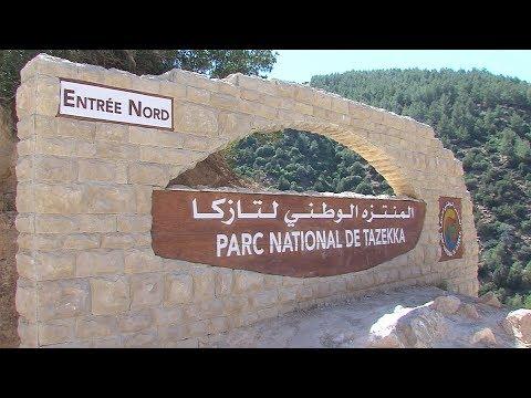 العرب اليوم - شاهد: منتزه رأس الماء في تازة ماء وخضرة و طبيعة خلابة