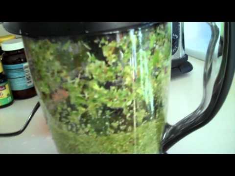 Video NINJA MASTER PREP PRO- Making a Green Drink with my Ninja- INCLUDES - FIBER/PULP from VEGIES