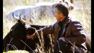 Рекламный ролик для Золотухинского молочного завода