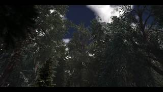 Testing new and more trees
