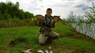 Рыбалка на фидер ловля рыбы на фидерную снасть (Рыбалка видео) / Feeder bream– MF №62