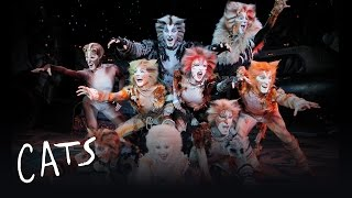 Prologue jellicle songs for jellicle cats cats jellicle songs part 1 cats the musical stopboris Choice Image