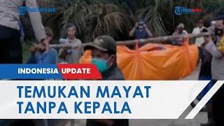 Soal mayat yang ditemukan Tanpa Kepala di Desa Lantak Seribu Jambi, Polisi Beri Penjelasan