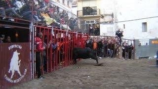 preview picture of video 'Gestalgar suspende fiesta  por la cojida recortador NO  ofrecemos imagenes sensibles'