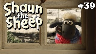 Download Video Shaun the Sheep - Salju dan Ski [Snowed In] MP3 3GP MP4