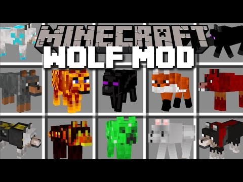 Minecraft EXTREME WOLF MOD / PLAY AND PET LOADS DIFFERENT WOLVES!! Minecraft