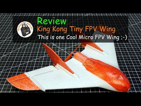 Review - King Kong/LDARC Tiny Wing 450 - Sweet Micro Wing ;-)