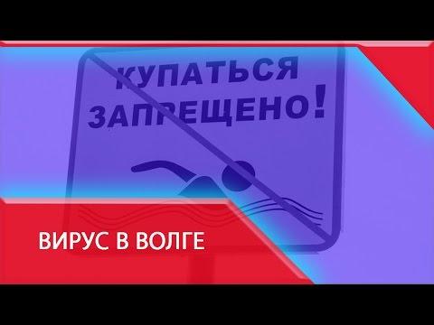 Прививка от гепатита в узбекистане