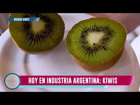 Kiwi, Industria argentina
