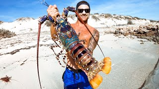 Catching GIANT CRAYFISH Barehanded For Food Living From The Ocean - Ep 194