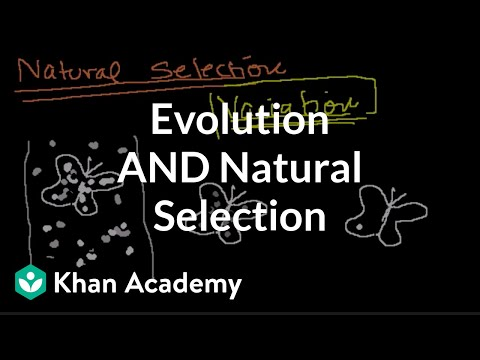 A thumbnail for: Evolution and natural selection
