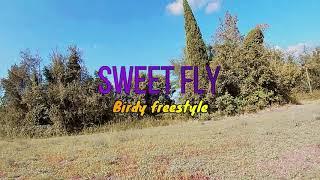 Sweet Fly FPV