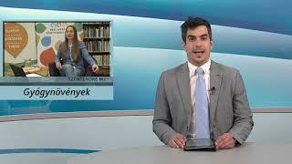Szentendre Ma / TV Szentendre / 2021.04.30.