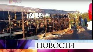 ВКазани начнется процедура опознания погибших встрашной аварии спассажирским автобусом вЗаинском