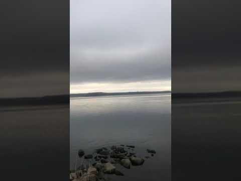 Video Of Wellesley Island, NY