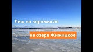 Зимняя рыбалка на жижицком озере