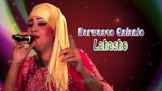 Somali Music Lahasho Song By ☆Barwaaqo Qalanjo☆