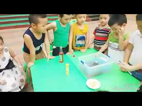 Niềm vui thích tham gia hoạt động thí nghiệm của các thiên thần nhỏ Trường Mầm non PARIS