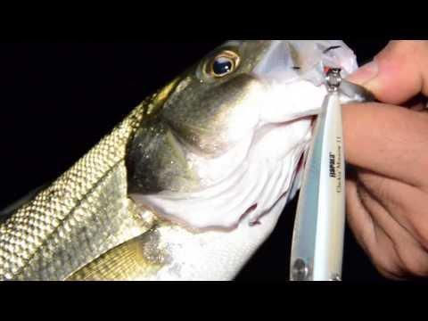 Udmurtia che pesca in relazione