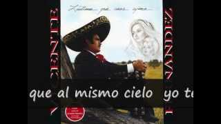Vicente Fernandez Lastima Que Seas Ajena (letra)