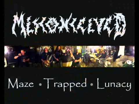 Misconceived - Misery Stench