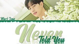 Mark Tuan - Never Told You