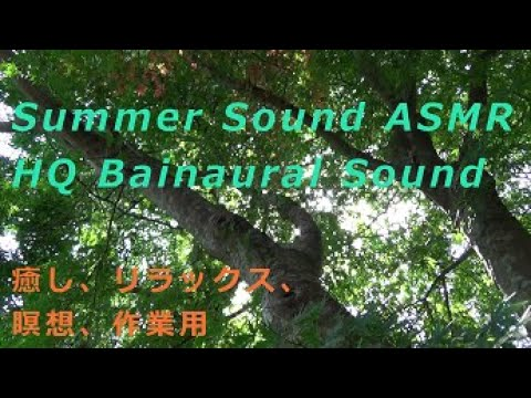 ゲーム・BGM・SEに必要な音を録音してきます プロ用機材でアナタの欲しいバイノーラル音素材を提供! イメージ1