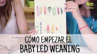 Baby Led Weaning: Cómo Empezar La Alimentación Complementaria Con El Método BLW