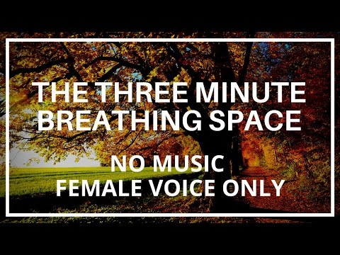The Three Minute Breathing Space - Mindfulness Meditation