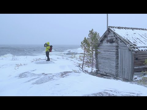 Attacked by Winter with the Cold Northern Gale
