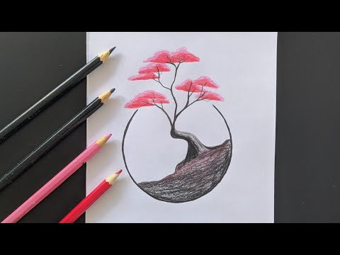Árvore Bonsai no Círculo
