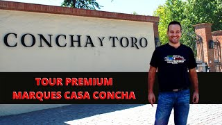 Tour Marques de Casa Concha na Vinícola Concha y Toro