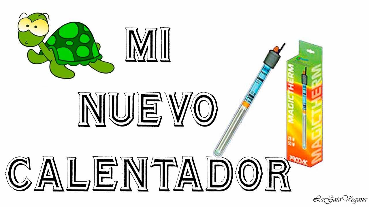 OS ENSEÑO MI CALENTADOR NUEVO PARA EL ESTANQUE DE TORTUGAS