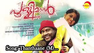 Thanthaane (M) -  Pullimaan