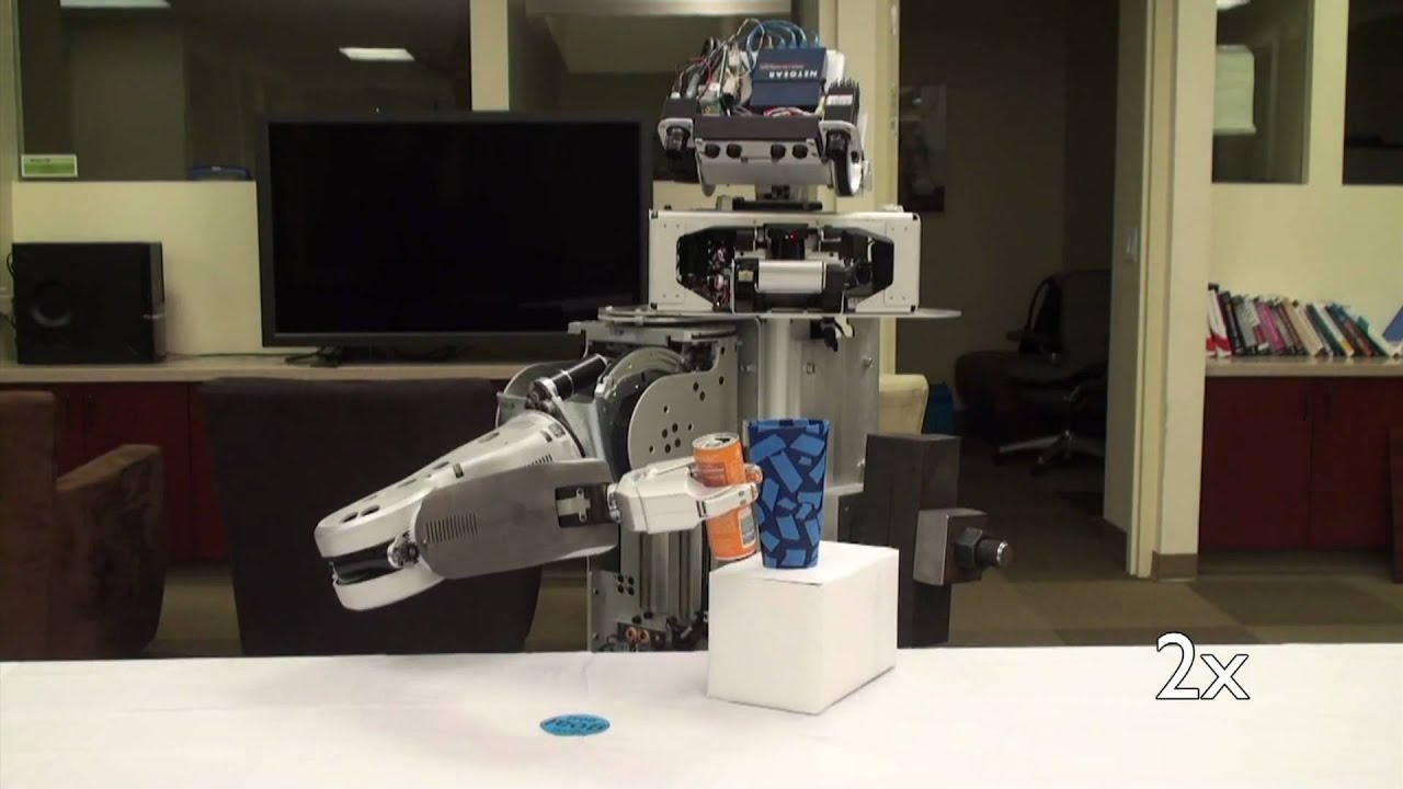 Action-Generalising Robot Is A Crucial Step Towards Robot Butlers