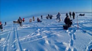 Отчет о рыбалке пермский край банда