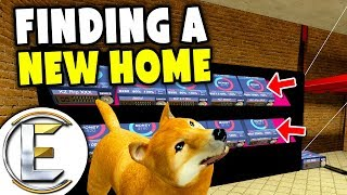 Finding A New Home - Gmod DarkRP Pet Life (A Clan Put Me In A Cage Fed Me Babies and Watermelon)