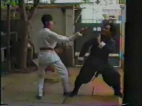 Wing Chun Masters 1991