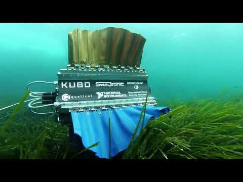 Mürekkep balığı tasarımlı yüzen robot