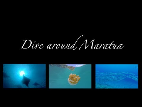 Dive around Maratua, Nabucco Island,Indonesien