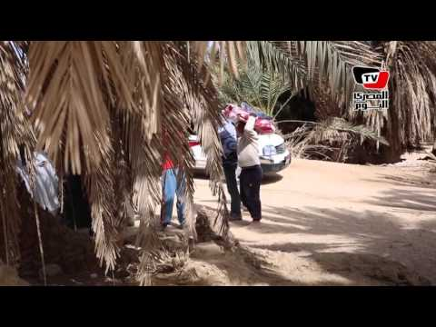 «المصري اليوم ومصر الخير» توزعان بطاطين وملابس على المحتاجين بطور سيناء