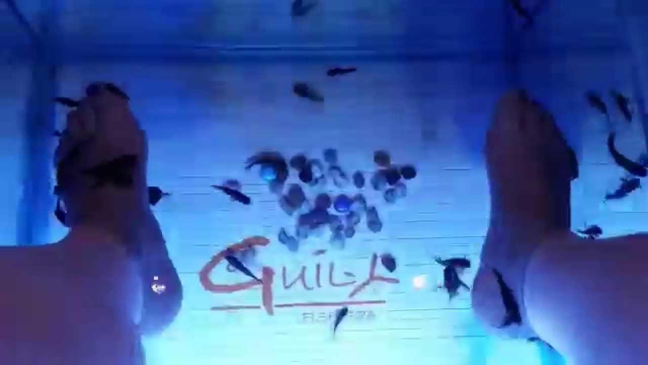 Guily Fish Spa - vidéo