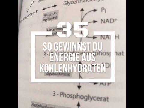 Built by Science #35 - Die Glykolyse und warum aus Fett keine Kohlenhydrate mehr werden können!