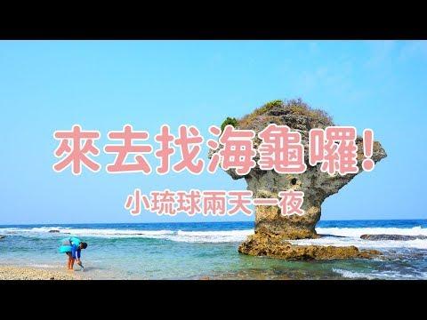 【開字幕 】來去看海龜!小琉球兩天一夜生態之旅
