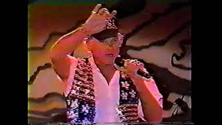 The Beach Boys at Ben Franklin Parkway Art Museum, Philadelphia, PA. July 4, 1995
