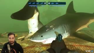 Köpüş Balığı Han